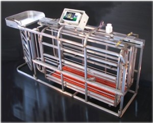 Weighing Systems for Zootechnical Sector