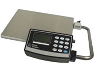 Weather Proof Scales