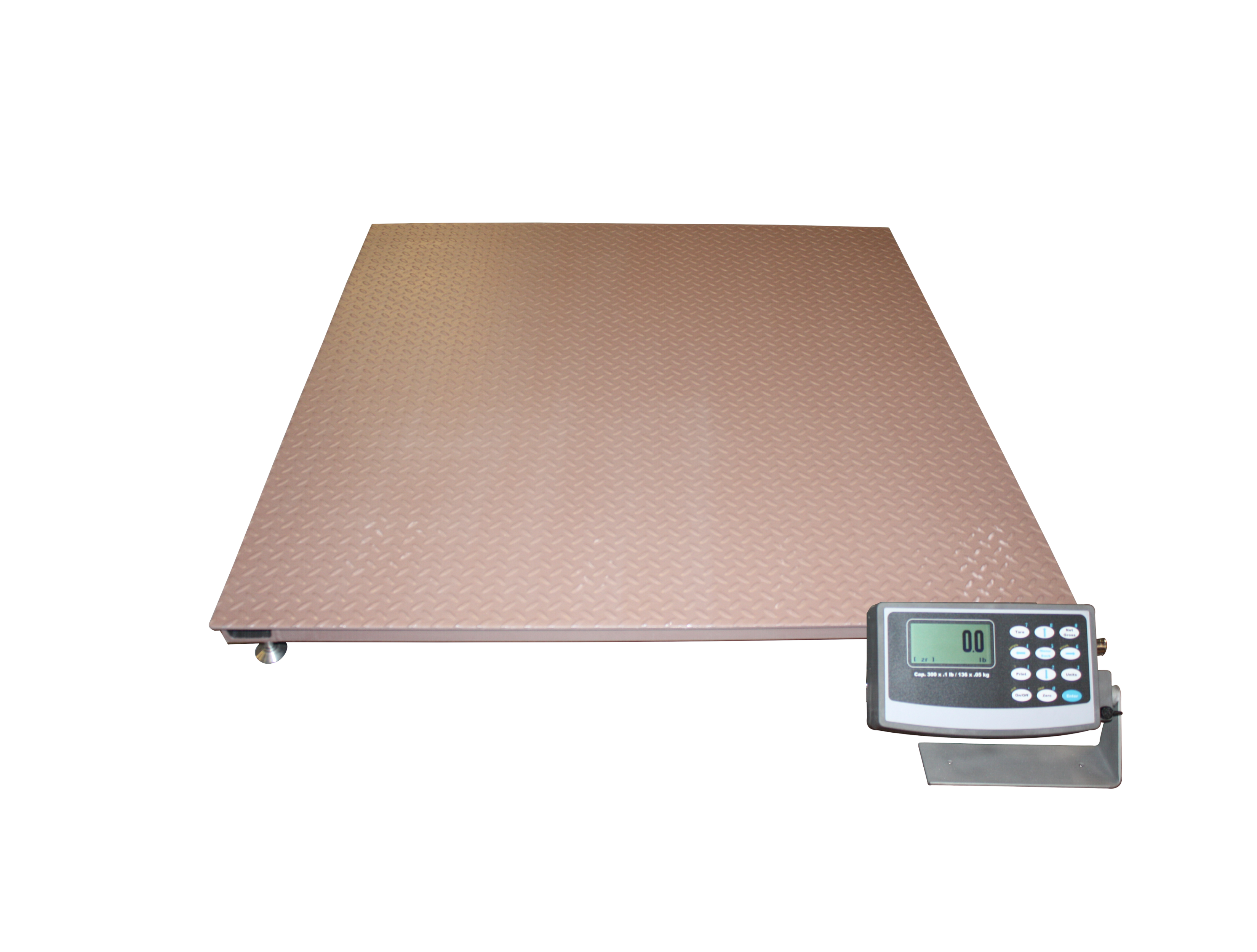 Arlynguard f intrinsically safe floor scales arlyn scales for Scale floor
