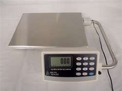 The High Precision of Industrial Bench Scales