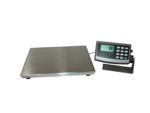 Intrinsically Safe Industrial Scales