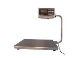 Electronic Bench Scales for the Food Industry